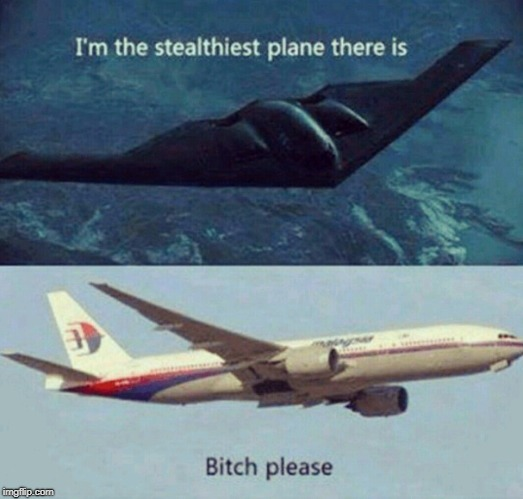 Stealth Vs Malaysia Airlines... | image tagged in memes,airplane | made w/ Imgflip meme maker