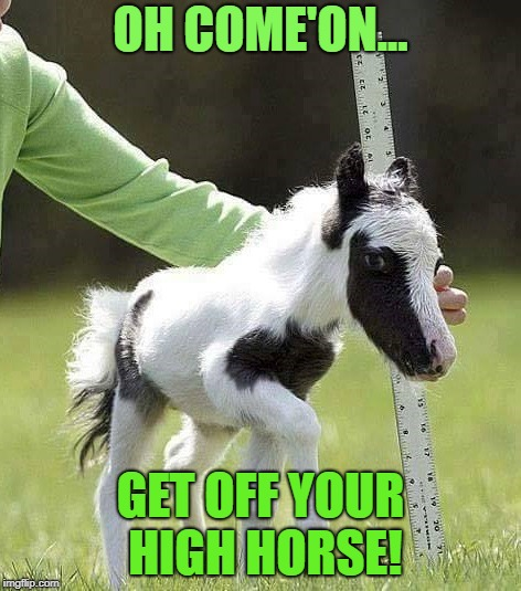OH COME'ON... GET OFF YOUR HIGH HORSE! | image tagged in high horse | made w/ Imgflip meme maker