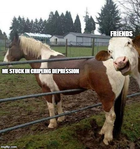 holy cow photo bomb | ME STUCK IN CRIPLING DEPRESSION FRIENDS | image tagged in holy cow photo bomb | made w/ Imgflip meme maker