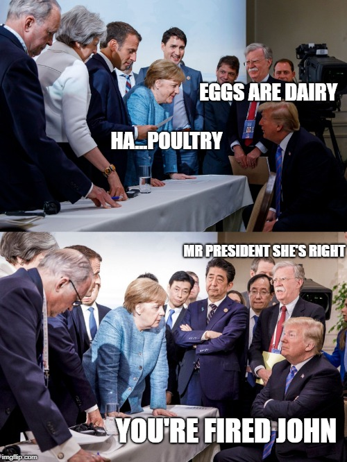 EGGS ARE DAIRY HA...POULTRY MR PRESIDENT SHE'S RIGHT YOU'RE FIRED JOHN | image tagged in trump fact | made w/ Imgflip meme maker
