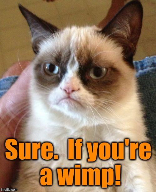 Grumpy Cat Meme | Sure.  If you're a wimp! | image tagged in memes,grumpy cat | made w/ Imgflip meme maker