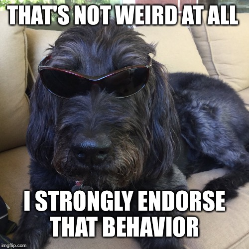 THAT'S NOT WEIRD AT ALL I STRONGLY ENDORSE THAT BEHAVIOR | made w/ Imgflip meme maker