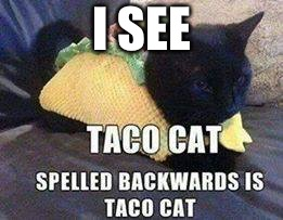 Interesting  | I SEE | image tagged in taco cat - tac ocat,ok meme | made w/ Imgflip meme maker
