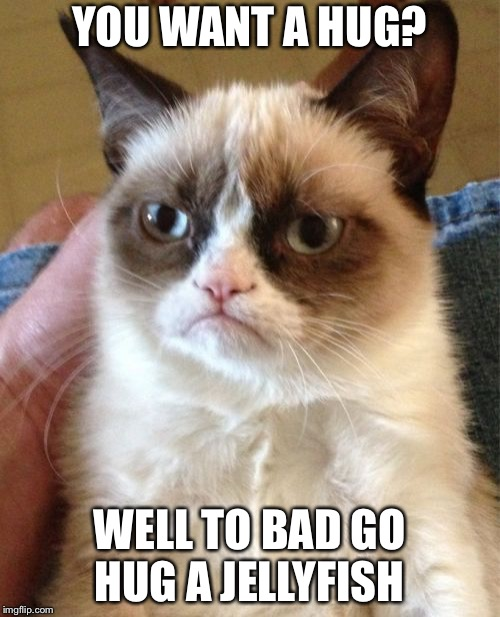 Grumpy Cat Meme | YOU WANT A HUG? WELL TO BAD GO HUG A JELLYFISH | image tagged in memes,grumpy cat | made w/ Imgflip meme maker