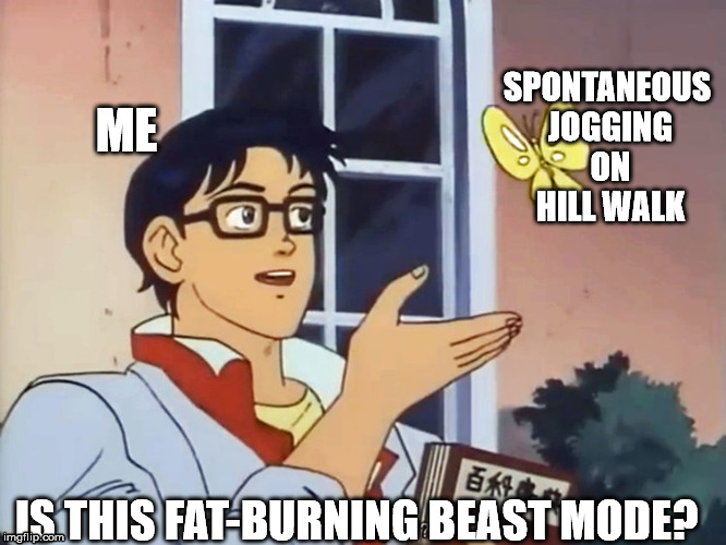 ANIME BUTTERFLY MEME | ME IS THIS FAT-BURNING BEAST MODE? SPONTANEOUS JOGGING ON HILL WALK | image tagged in anime butterfly meme | made w/ Imgflip meme maker