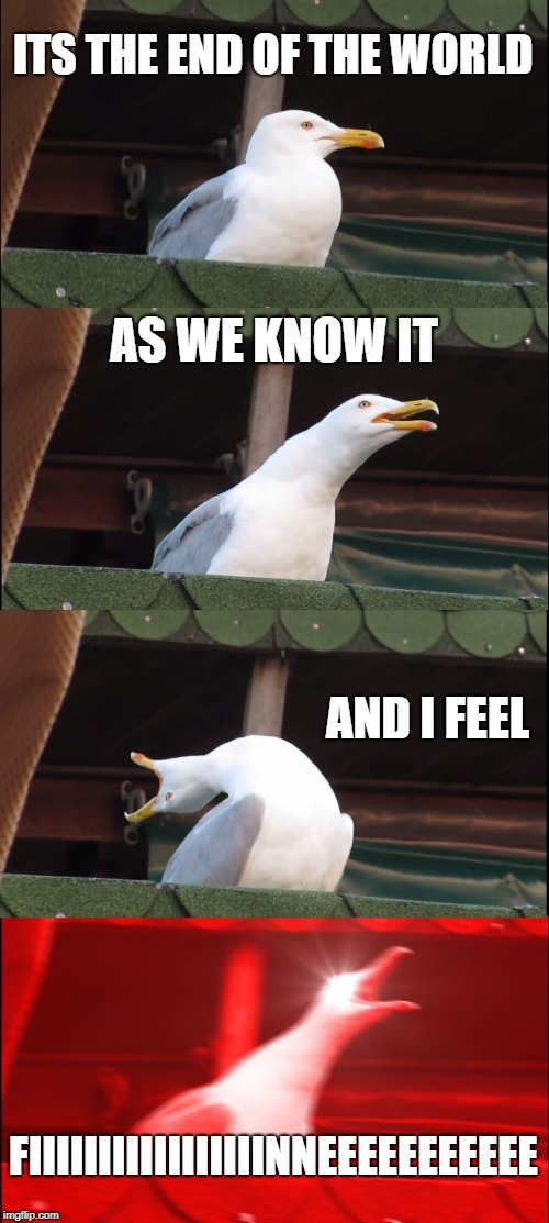 Inhaling Seagull Meme | ITS THE END OF THE WORLD AS WE KNOW IT AND I FEEL FIIIIIIIIIIIIIIIIINNEEEEEEEEEEE | image tagged in memes,inhaling seagull | made w/ Imgflip meme maker