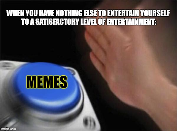 Blank Nut Button Meme | WHEN YOU HAVE NOTHING ELSE TO ENTERTAIN YOURSELF TO A SATISFACTORY LEVEL OF ENTERTAINMENT: MEMES | image tagged in memes,blank nut button | made w/ Imgflip meme maker