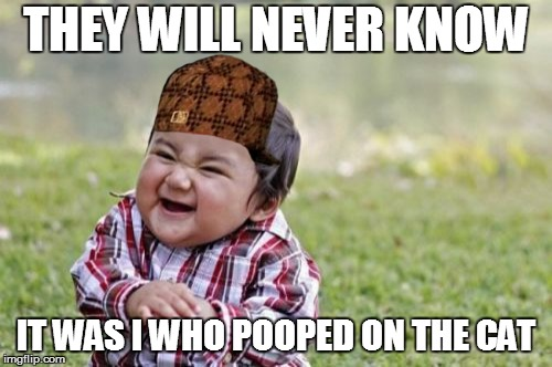 Evil Toddler Meme | THEY WILL NEVER KNOW IT WAS I WHO POOPED ON THE CAT | image tagged in memes,evil toddler,scumbag | made w/ Imgflip meme maker