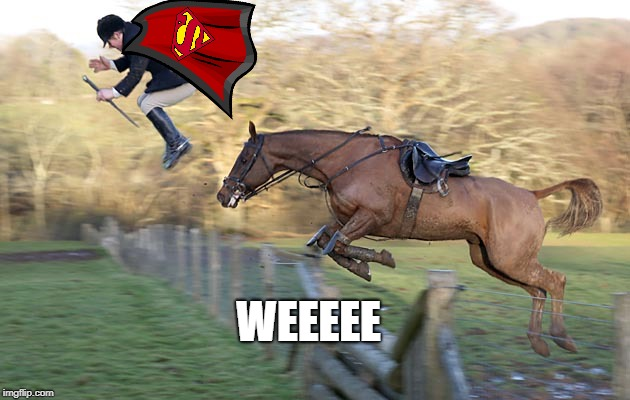 Up, up, and awaaaayyyy! | WEEEEE | image tagged in horse,horses,superman,dc comics,dc,fail | made w/ Imgflip meme maker