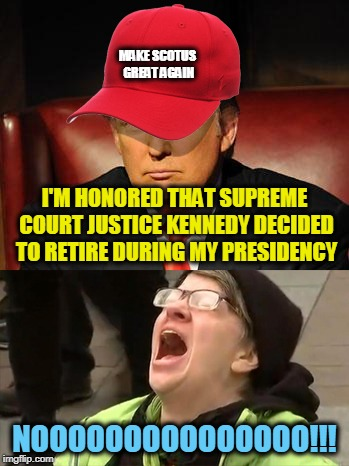 Tormentor in Chief | MAKE SCOTUS GREAT AGAIN NOOOOOOOOOOOOOOO!!! I'M HONORED THAT SUPREME COURT JUSTICE KENNEDY DECIDED TO RETIRE DURING MY PRESIDENCY | image tagged in tormentor in chief | made w/ Imgflip meme maker