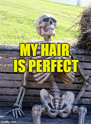 Waiting Skeleton Meme | MY HAIR IS PERFECT | image tagged in memes,waiting skeleton | made w/ Imgflip meme maker