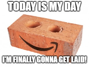 Feeling like the last brick on the pallet today. | TODAY IS MY DAY I'M FINALLY GONNA GET LAID! | image tagged in funny memes,humor | made w/ Imgflip meme maker
