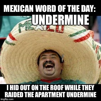 Mexican Word of the Day (LARGE) | UNDERMINE I HID OUT ON THE ROOF WHILE THEY RAIDED THE APARTMENT UNDERMINE | image tagged in mexican word of the day large | made w/ Imgflip meme maker