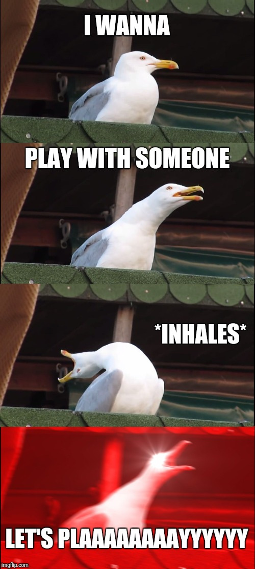 Inhaling Seagull Meme | I WANNA PLAY WITH SOMEONE *INHALES* LET'S PLAAAAAAAAYYYYYY | image tagged in memes,inhaling seagull | made w/ Imgflip meme maker