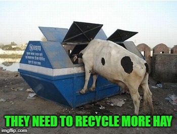 THEY NEED TO RECYCLE MORE HAY | made w/ Imgflip meme maker