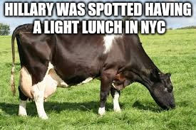 HILLARY WAS SPOTTED HAVING A LIGHT LUNCH IN NYC | made w/ Imgflip meme maker