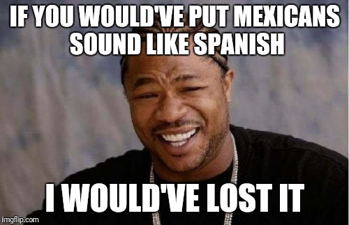 Yo Dawg Heard You Meme | IF YOU WOULD'VE PUT MEXICANS SOUND LIKE SPANISH I WOULD'VE LOST IT | image tagged in memes,yo dawg heard you | made w/ Imgflip meme maker