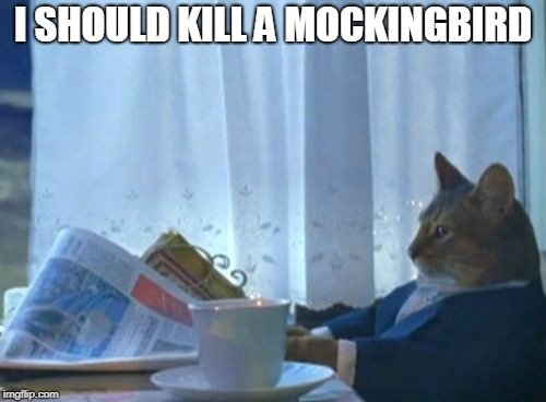 I Should Buy A Boat Cat | I SHOULD KILL A MOCKINGBIRD | image tagged in memes,i should buy a boat cat,harper lee,to kill a mockingbird,ocarina of time,automeme | made w/ Imgflip meme maker