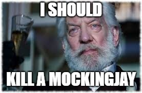 I SHOULD KILL A MOCKINGJAY | made w/ Imgflip meme maker