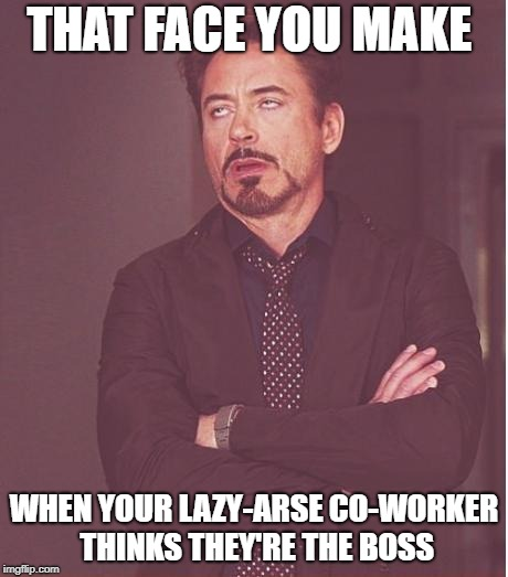Face You Make Robert Downey Jr Meme | THAT FACE YOU MAKE WHEN YOUR LAZY-ARSE CO-WORKER THINKS THEY'RE THE BOSS | image tagged in memes,face you make robert downey jr | made w/ Imgflip meme maker