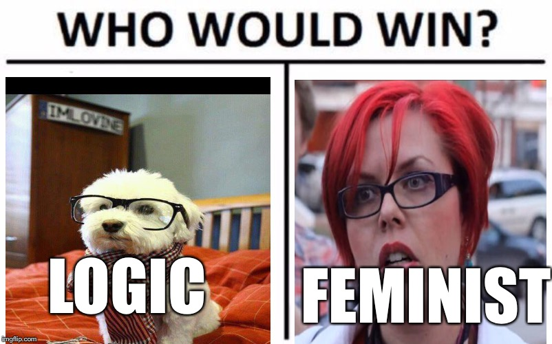 Who Would Win? Meme | LOGIC FEMINIST | image tagged in memes,who would win | made w/ Imgflip meme maker