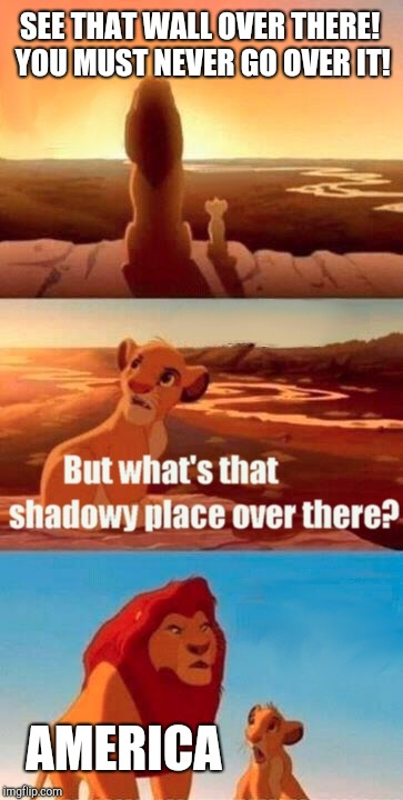 Simba Shadowy Place Meme | SEE THAT WALL OVER THERE! YOU MUST NEVER GO OVER IT! AMERICA | image tagged in memes,simba shadowy place | made w/ Imgflip meme maker