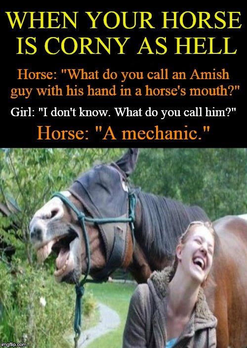 "A talking horse ain't much fun when his jokes suck.... She seems to be enjoying it, tho'. | Horse: ""What do you call an Amish guy with his hand in a horse's mouth?"" Horse: ""A mechanic."" Girl: ""I don't know. What do you call him?"" WH 