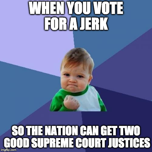 Plus jobs are coming back! | WHEN YOU VOTE FOR A JERK SO THE NATION CAN GET TWO GOOD SUPREME COURT JUSTICES | image tagged in success kid,donald trump,supreme court,make america great again,liberal,hillary clinton | made w/ Imgflip meme maker