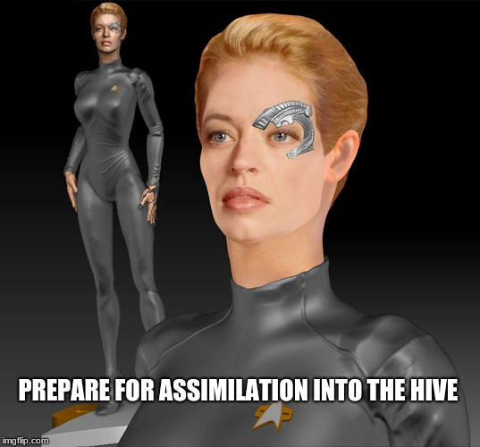 PREPARE FOR ASSIMILATION INTO THE HIVE | image tagged in seven of nine | made w/ Imgflip meme maker