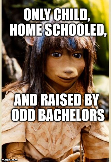 ONLY CHILD, HOME SCHOOLED, AND RAISED BY ODD BACHELORS | image tagged in introspective jen | made w/ Imgflip meme maker