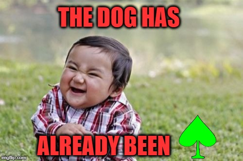 Evil Toddler Meme | THE DOG HAS ALREADY BEEN | image tagged in memes,evil toddler | made w/ Imgflip meme maker