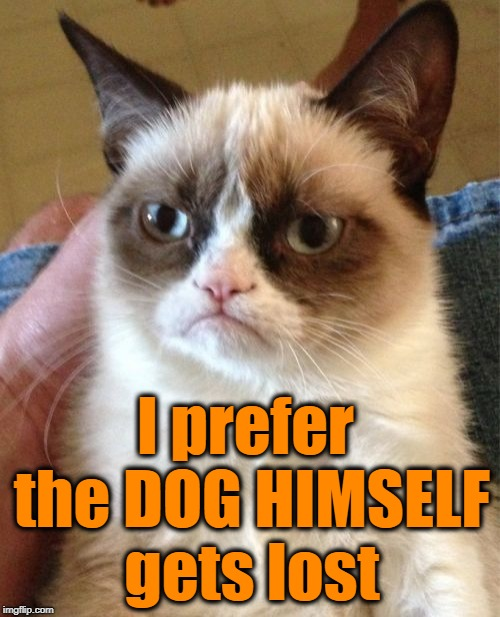 Grumpy Cat Meme | I prefer the DOG HIMSELF gets lost | image tagged in memes,grumpy cat | made w/ Imgflip meme maker