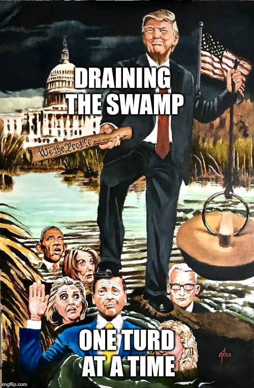 Draining the Swamp | DRAINING THE SWAMP ONE TURD AT A TIME | image tagged in donald trump,trump 2020,maga | made w/ Imgflip meme maker