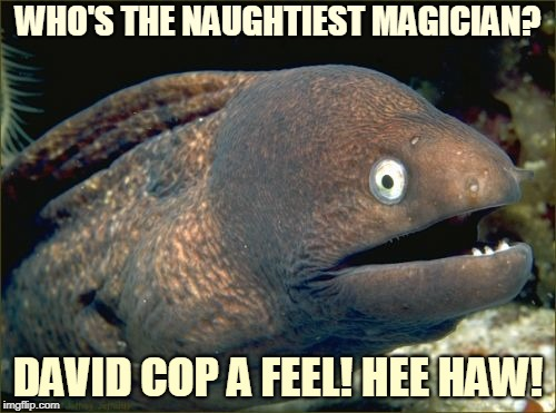 If You've Enjoyed this Show, Give Your Tip to the Waitress. | WHO'S THE NAUGHTIEST MAGICIAN? DAVID COP A FEEL! HEE HAW! | image tagged in memes,bad joke eel,pun,bad pun,david copperfield,magic | made w/ Imgflip meme maker