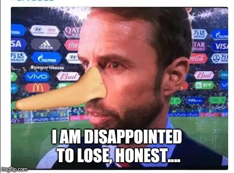 I AM DISAPPOINTED TO LOSE, HONEST.... | image tagged in gareth southgate england crap will get knocked out next round | made w/ Imgflip meme maker