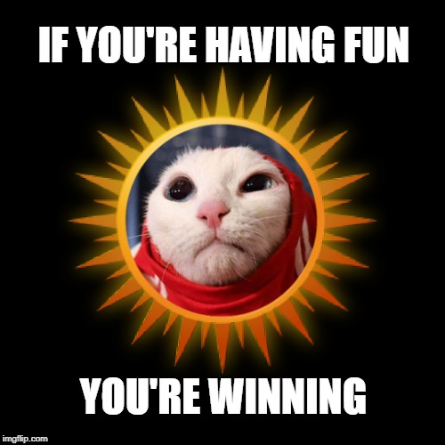 IF YOU'RE HAVING FUN YOU'RE WINNING | image tagged in cat meme,having fun,winning,world cup,kitty,yes | made w/ Imgflip meme maker