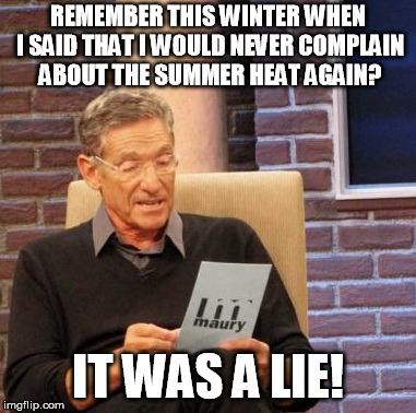 Maury Lie Detector Meme | REMEMBER THIS WINTER WHEN I SAID THAT I WOULD NEVER COMPLAIN ABOUT THE SUMMER HEAT AGAIN? IT WAS A LIE! | image tagged in memes,maury lie detector | made w/ Imgflip meme maker