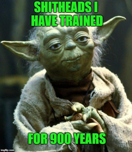 Star Wars Yoda Meme | SHITHEADS I HAVE TRAINED FOR 900 YEARS | image tagged in memes,star wars yoda | made w/ Imgflip meme maker