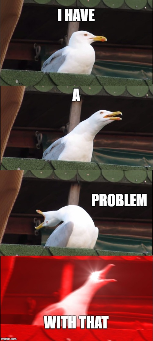 Inhaling Seagull Meme | I HAVE A PROBLEM WITH THAT | image tagged in memes,inhaling seagull | made w/ Imgflip meme maker