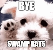 BYE SWAMP RATS | made w/ Imgflip meme maker