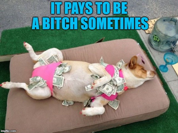 IT PAYS TO BE A B**CH SOMETIMES | made w/ Imgflip meme maker