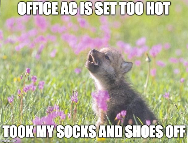 Baby Insanity Wolf Meme | OFFICE AC IS SET TOO HOT TOOK MY SOCKS AND SHOES OFF | image tagged in memes,baby insanity wolf,AdviceAnimals | made w/ Imgflip meme maker