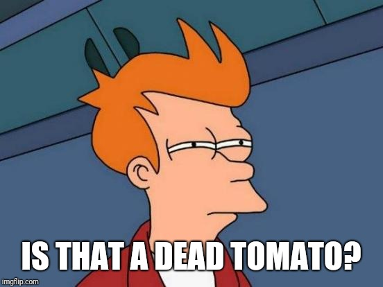 Futurama Fry Meme | IS THAT A DEAD TOMATO? | image tagged in memes,futurama fry | made w/ Imgflip meme maker