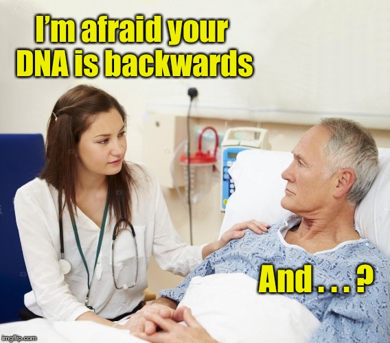 Doctor word play | I'm afraid your DNA is backwards And . . . ? | image tagged in doctor with patient,memes,patient,dna,bad pun | made w/ Imgflip meme maker