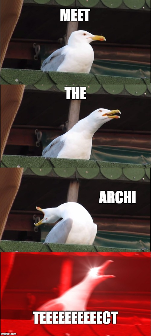 Inhaling Seagull Meme | MEET THE ARCHI TEEEEEEEEEECT | image tagged in memes,inhaling seagull | made w/ Imgflip meme maker