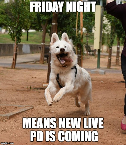 FRIDAY NIGHT MEANS NEW LIVE PD IS COMING | image tagged in overly excited dog | made w/ Imgflip meme maker