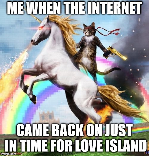 Welcome To The Internets Meme | ME WHEN THE INTERNET CAME BACK ON JUST IN TIME FOR LOVE ISLAND | image tagged in memes,welcome to the internets | made w/ Imgflip meme maker