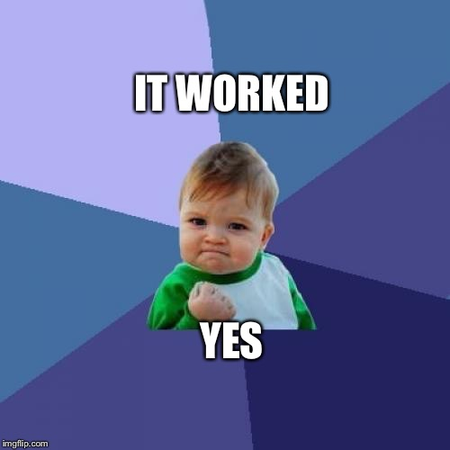 Success Kid Meme | YES IT WORKED | image tagged in memes,success kid | made w/ Imgflip meme maker