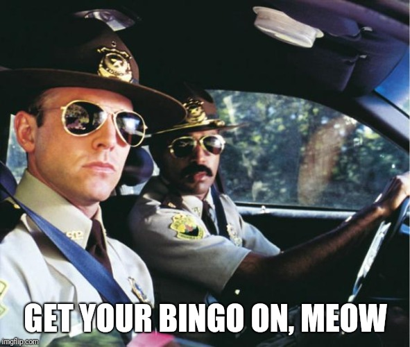 GET YOUR BINGO ON, MEOW | made w/ Imgflip meme maker