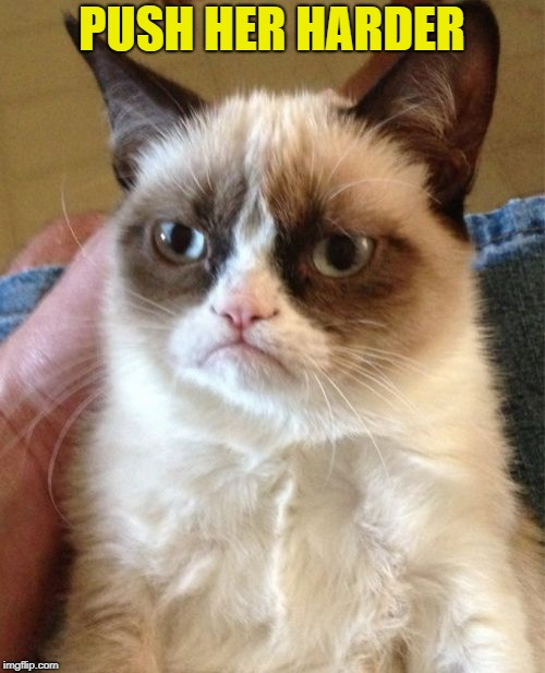 Grumpy Cat Meme | PUSH HER HARDER | image tagged in memes,grumpy cat | made w/ Imgflip meme maker